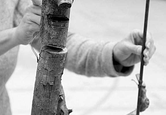 L'homme qui plantait des arbres - Théâtre des Turbulences - #BIAM2017
