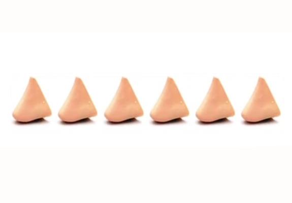 Six faux nez
